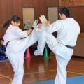 東大和道場の皆さんが上宿小学校にて演武を行いました(2018/12/15(土)上宿小学校体育館)