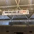 神奈川県大会新人戦「第9回金太郎杯」(2019/3/31(日)小田原アリーナ)
