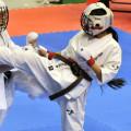 2013国際親善空手道選手権大会 2012.4.26〜28/東京体育館