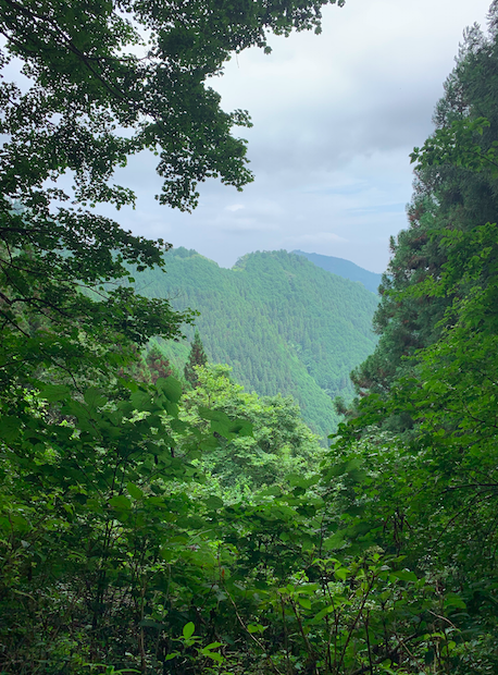 御岳山からの景色