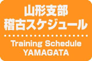 schedule_y