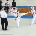 2017群馬県空手道選手権大会
